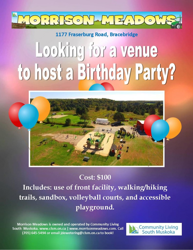 morrison-meadows-birthday-parties-flyer-2019