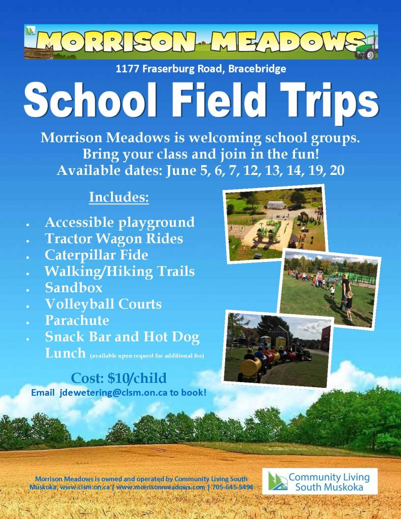 morrison-meadows-summer-school-groups-flyer-2019